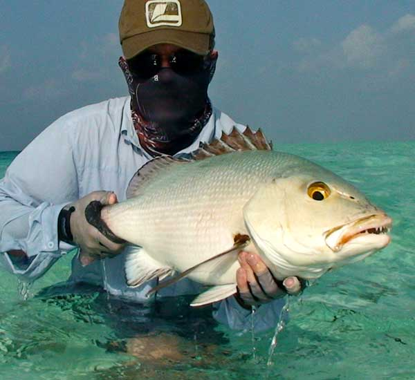 Fly Fshing for Bohar Snapper