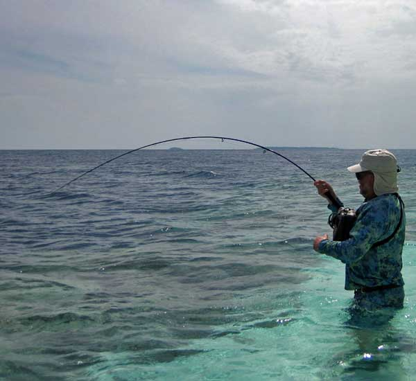 Fly Fishing for Tuna
