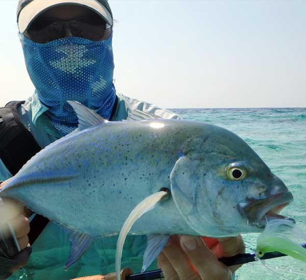 Fy Fishing for Bluefin Trevally