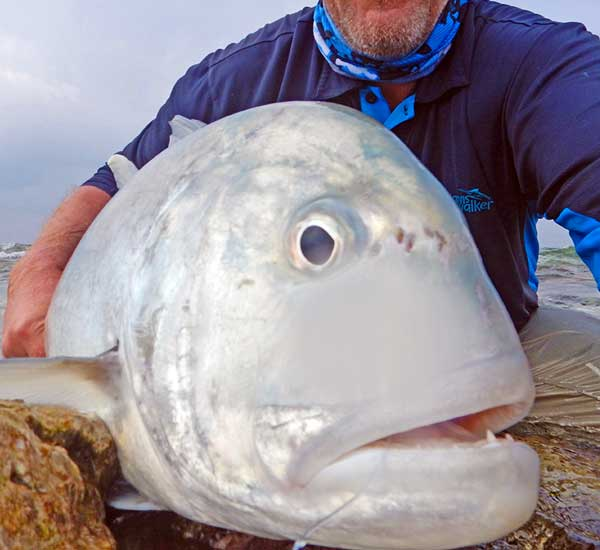 Fly Fishing for Giant Trevally