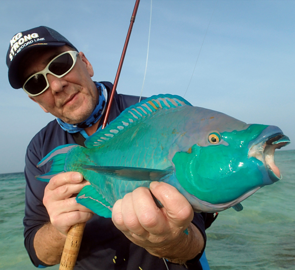 Fly Fishing for Parrotfish