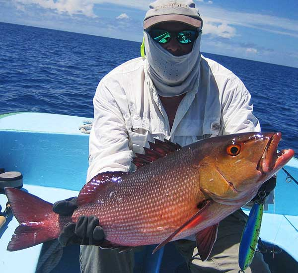 Spin Fishing with Popper and Stickbait for Giant Trevally, Tuna, Snapper, Grouper and more.
